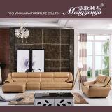 Echtes Leder-Form-Liege-Sofa (896#)