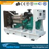 Vente de prix usine produisant du diesel réglé de groupe électrogène de moteur électrique