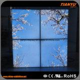 60X60天井の空のライトボックス