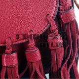 Neue Form-Frauen PU-Handtasche (CB-1509179)