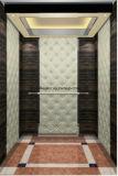 Подъем лифта подъема лифта пассажира селитебный
