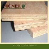 Contre-plaqué de bois dur de BB/CC avec le prix bas