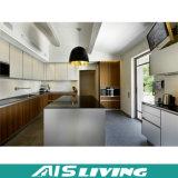 Мебель неофициальных советников президента PVC самомоднейшей конструкции дешевая (AIS-K127)