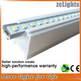 LED T5 Tube Light T5 Easy Light per Bus