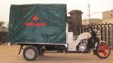 Il nuovo triciclo della rotella/ha chiuso il motociclo del contenitore di carico