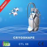 Perder eficazmente o corpo de Coolsculpting do vácuo de Cryo do peso que Slimming o equipamento