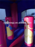 Principessa differente Theme Inflatable Bouncy Castle di fiabe su ordinazione