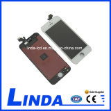 Bom Quality Mobile Phone LCD para o iPhone 5 LCD Screen
