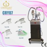 Machine de beauté de perte de poids de gel de Cryolipolysis de membrane de l'antigel Cry07 grosse avec 3 Handpieces (CE)