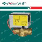 Fornitore con esperienza dell'OEM di valvola motorizzata ritorno della molla per il riscaldamento, la ventilazione ed il sistema di condizionamento d'aria