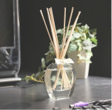 Professionnel OEM Reed Diffuseur Fragrance Atelier