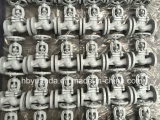 Valvole di globo del ghisa di DIN3356 GG25 PN16