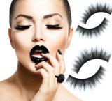 Cigli falsi dei capelli naturali della strumentazione di Beaury per le donne