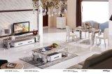 Tavolino da salotto domestico di acciaio inossidabile superiore della mobilia dello Steen