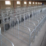 Pig Breedingのための熱いDIP Galvanizing Steel Enclosure