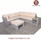 屋外のためのC表が付いている熱い藤のソファー(5091)