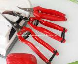 Ножницы сада инструментов сада для экспорта