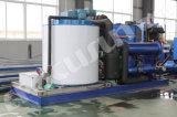 Focusun éclaille d'usine de glace d'eau de mer de 10 T