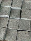 Granito/grigio/grigio medio/bianco/nero/colore giallo/rosso/verde/colore rosa beige/azzurro/Brown/granito arancione per le mattonelle