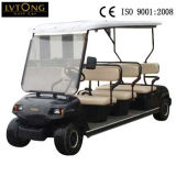 8 Seaterの旧式な電気ゴルフカート