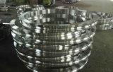 Kundenspezifischer geschmiedeter gerollter Ring für Windmotor