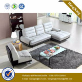 Sofa moderne de bureau de divan de cuir véritable de meubles de bureau (HX-SN043)