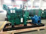Pompa ad acqua diesel di grande di flusso di doppia aspirazione di spaccatura irrigazione orizzontale di caso