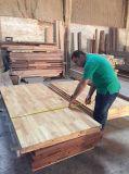 Porta deslizante de madeira contínua com vidro (DS-308)