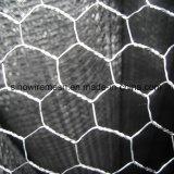 Acoplamiento de alambre galvanizado de pollo/tela metálica hexagonal con acero con poco carbono