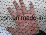 """1 """" het Gegalvaniseerde Hexagonale Opleveren van de Draad/Het Opleveren van het Kippegaas"""