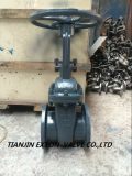 Valvola a saracinesca del acciaio al carbonio di norme GOST