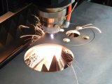 Modèle neuf de machine de découpage de laser de fibre de GS de Hans de Chine