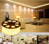 Flex IP68 des LED-Streifen-Licht-Installationssatz-5050 für im Freiendekoration