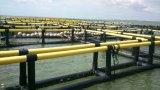 Jaulas flotantes del HDPE para la acuacultura de la Tilapia