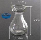 Прозрачным стеклянным контейнеры бутылочного стекла введенные Flowerpot Hydroponic