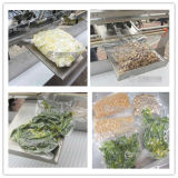 Verpackungsmaschine des VakuumLsbz-3, fortschrittliche Gemüseverpackungsmaschine, konservierter Nahrungsmittelvakuumverpacker
