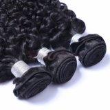 Человеческие волосы Remy оптового выдвижения человеческих волос бразильские (SL-HE7A005)