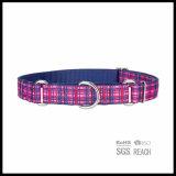 Collar de martingales perro en el patrón de moda