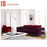 Projeto de jogos do sofá do estilo de Luxuru para a mobília da sala de visitas