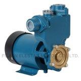 Hauptgebrauch-lärmarme HochdruckTrinkwasser-Turbulenz-Pumpe