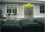 Red soldada cubierta PVC galvanizada de la cerca del acoplamiento de alambre