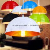 Lamp van de Tegenhanger van het Aluminium van het Restaurant van de Levering van Zhongshan de Decoratieve Hangende