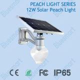 Solarlicht alles des pfirsich-12W in einem Solar-LED-Garten-Straßenlaternemit Fernsteuerungsfunktion