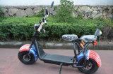 1000W 60V/30ahの電気チョッパーのバイク