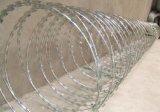 Concertina Razor Wire / Cbt65 Single Coil Razor Barbed Wire