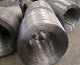 Трудная тянутая проволка - стальной провод штанга - провод SAE 10b21 низкоуглеродистый стальной для гайки болта винта
