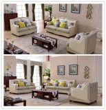 Il sofà di buona qualità di disegno moderno (8025)