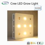 크리 사람 칩 9*200W LED는 Hydroponic 시스템 성장을%s 가볍게 증가한다