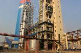 Grado agricolo/fertilizzante industriale Tailandia dell'azoto dell'urea 46% del grado