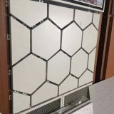 Pannelli a sandwich di alluminio architettonici creativi del favo per la decorazione
